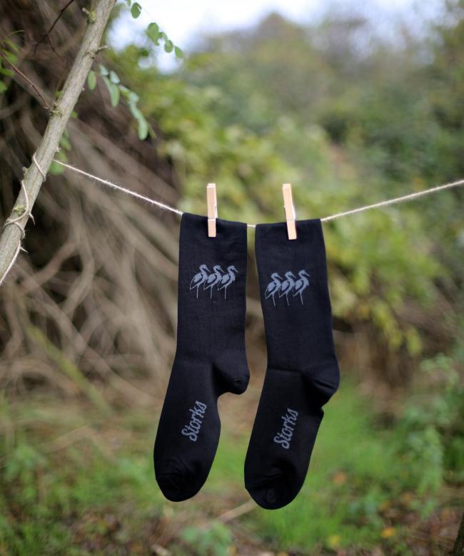 Les échassiers noirs